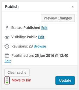 wp-rocket-publish