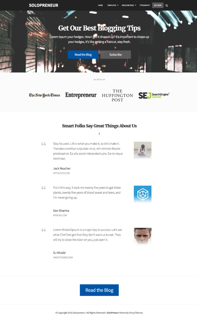 solopreneur-theme-review-example-landing-page-1